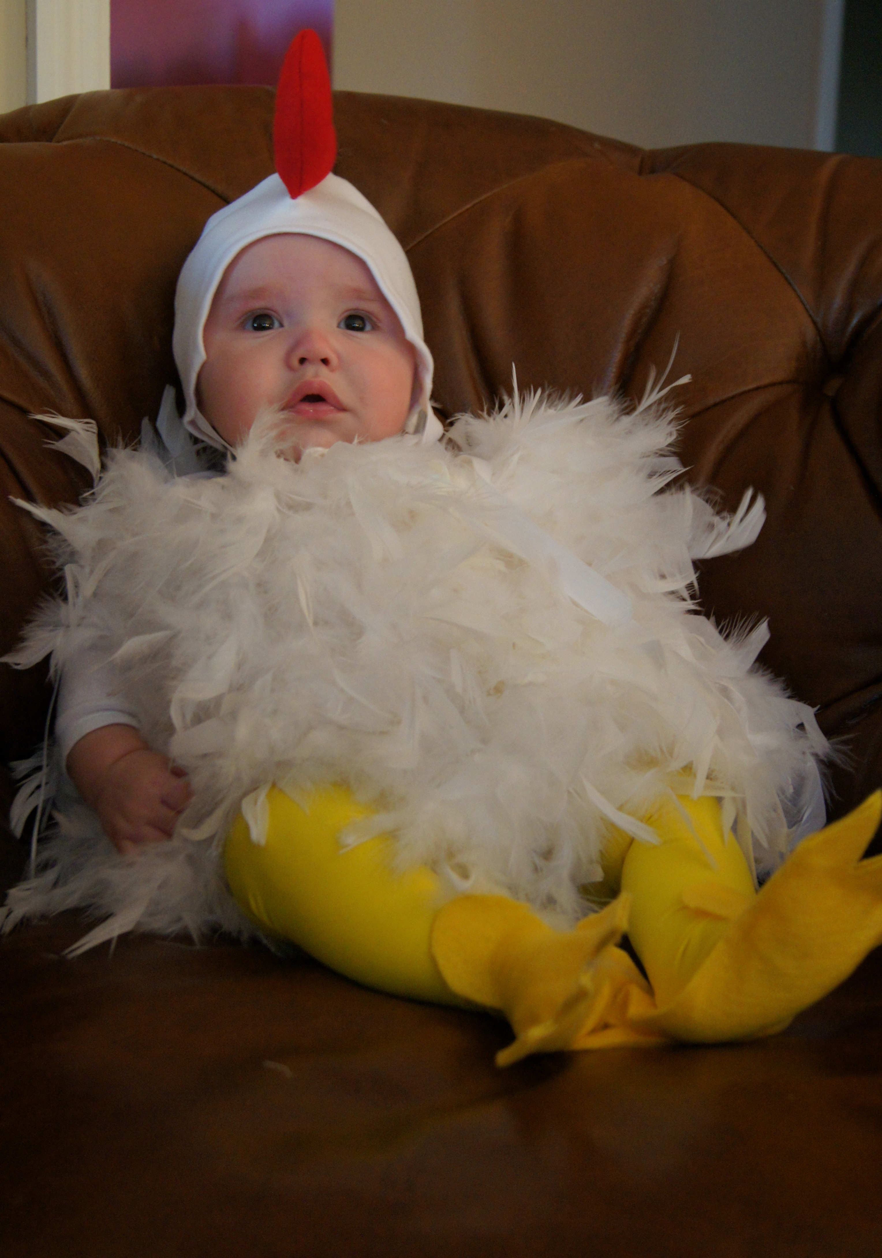 When my son was an infant and we picked out a chicken costume for him I recall my husband telling me that I better enjoy picking out cutesy costumes for ...  sc 1 st  spoonfuloflife.org & Halloween Costumes | spoonfuloflife.org